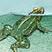 <br>Pilt tiigi elanikest ajakirjale Loodussõber. Pliiats ja akvarell. Aastal 2011.